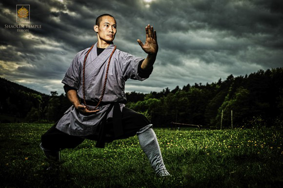 Shaolin Temple Europe - Rou Quan