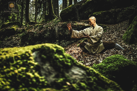 Shaolin Temple Europe - Tai Ji Quan