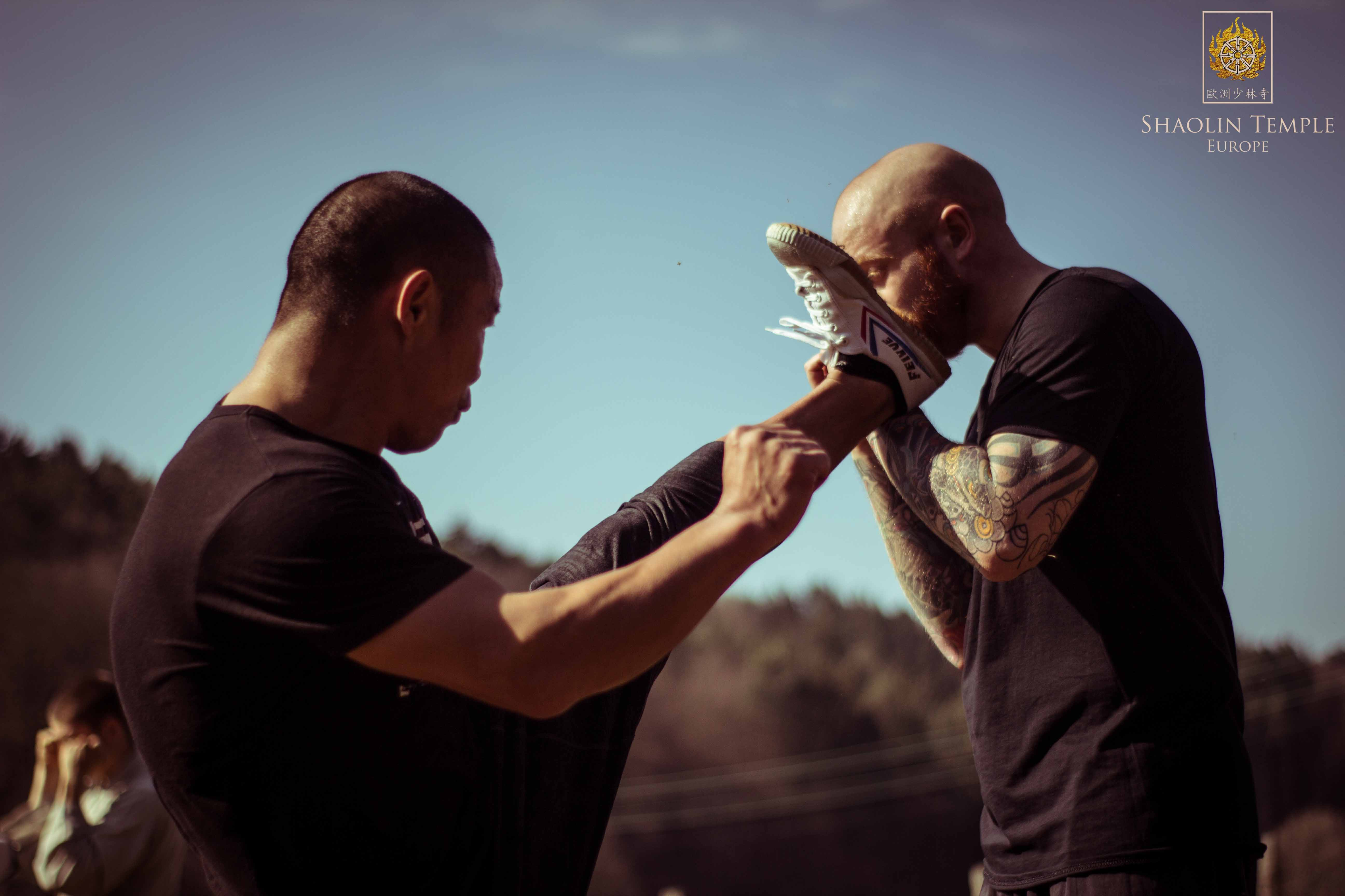 Training with Shifu YanLei